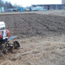 Vspaschka-zemli-s-pomoshhju-motobloka-1140x560